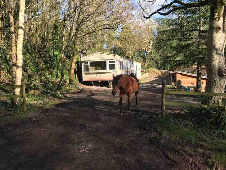 'Lovell's Copse, affordable, comfortable mobile'