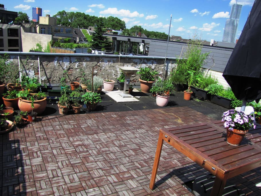 Dachterrasse /  roof terrace