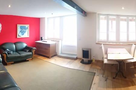Neue 2 1/2 Zimmer Wohnung mit Gartensitzplatz - Schwanden bei Brienz