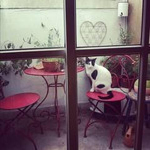 the small pretty patio porch