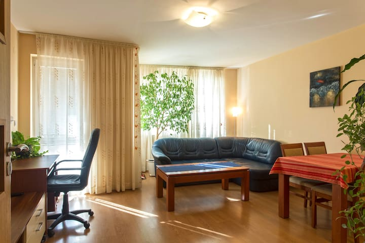 Boryana street apartment - Sofia - Appartement