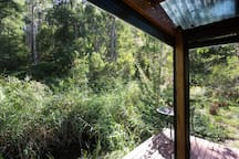 View towards lower deck with stringybark forest beyond.