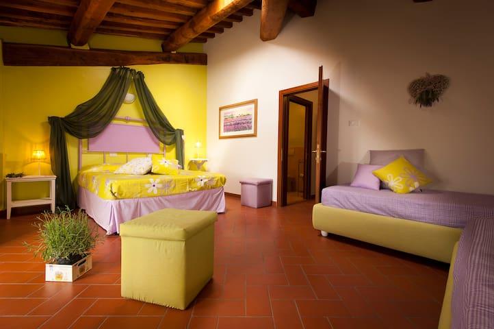 Antico Granaione B&B Lavender Room