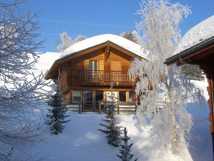 Chalet 338 directly on the slopes