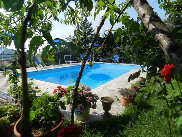 Bed&Breakfast swimming La Mortella - Albanella - Bed & Breakfast