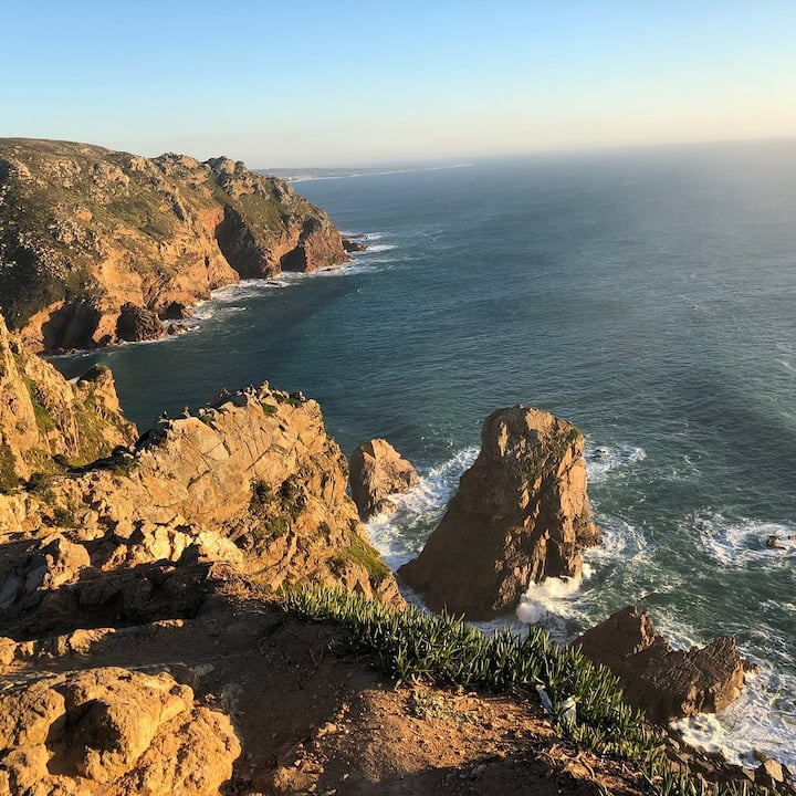 The coast line kingdom