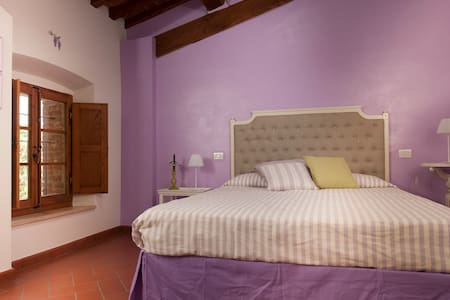Antico Granaione BB Wisteria Room - Bed & Breakfast
