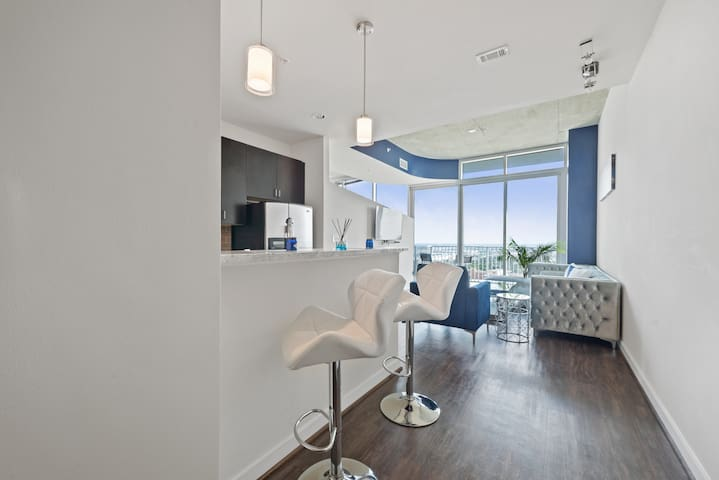 Luxury Condo/SPECTACULAR View! Med, Dwntwn, NRG