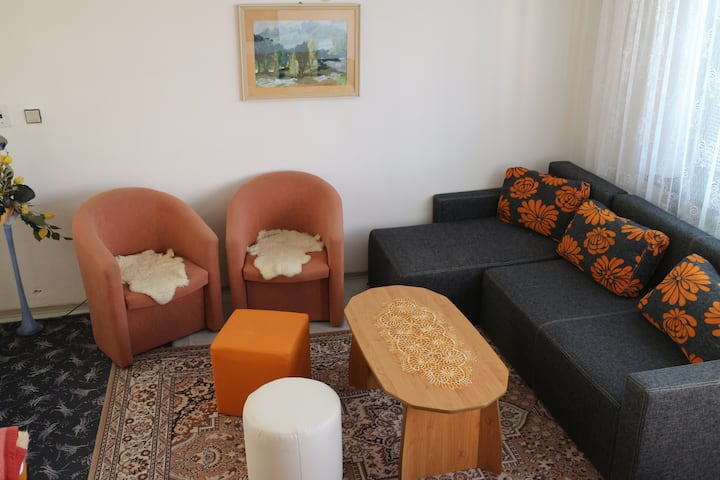 Apartment not only for Family