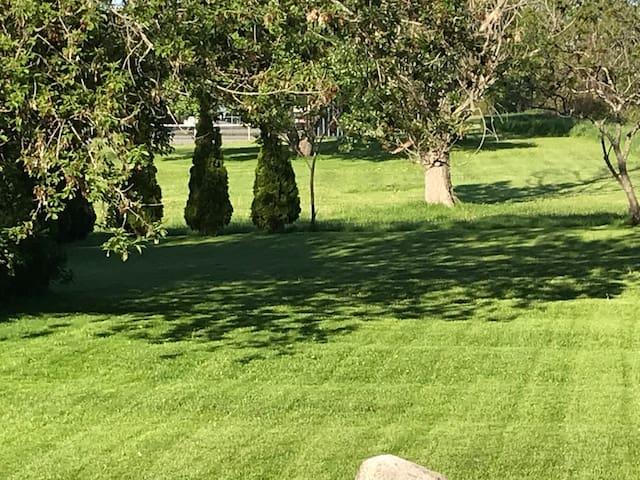 Big private yard