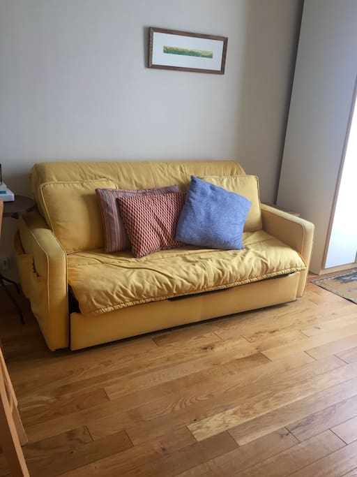 pull out sofa. very comfortable