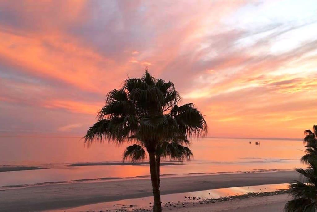 Beach View of Sea of Cortez