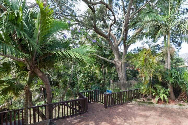 Тропический дом с водопадом недалеко от Мэнли