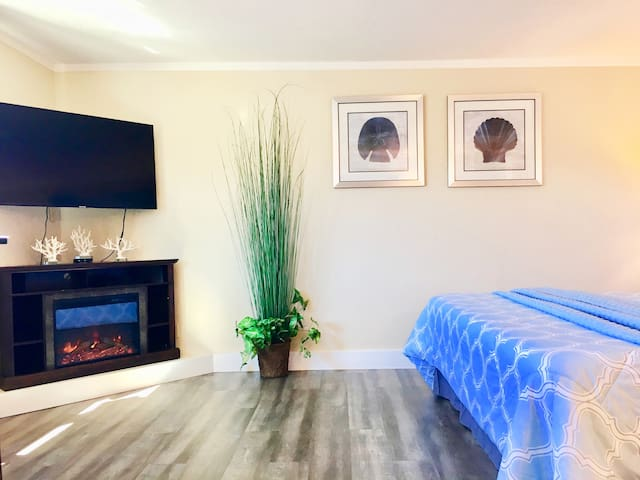 Large HDTV, Blue-ray player and infrared fireplace.
