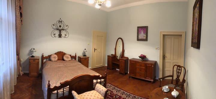 Villa Primavesi's Secret room