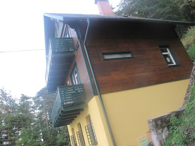 Wohnen am Waldrand über dem Südbahnhotel