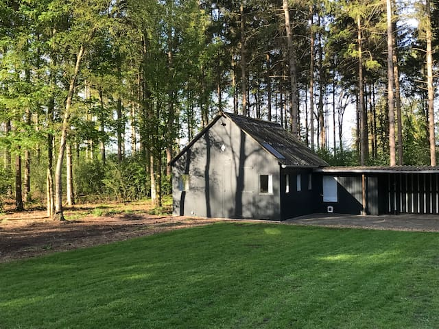 Tiny house (35m2) in the forrest, vechtdal, 4-P