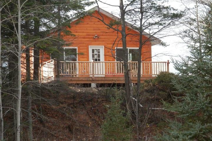 Pintals Wilderness Cabin