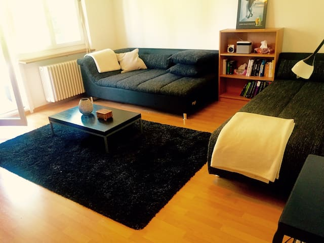 Two room apartment Zurich beautifully located - Zúrich - Departamento