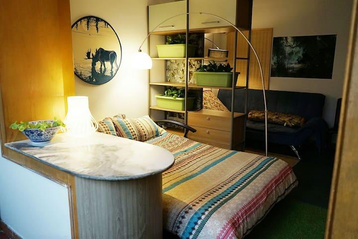 sunshine bedroom,nearby Peking University/颐和园 - 北京 - Leilighet