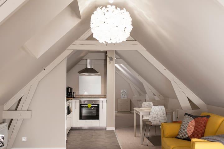 """""""Au bois Blanc""""Logement entier charme en campagne - Radinghem-en-Weppes - Apartment"""
