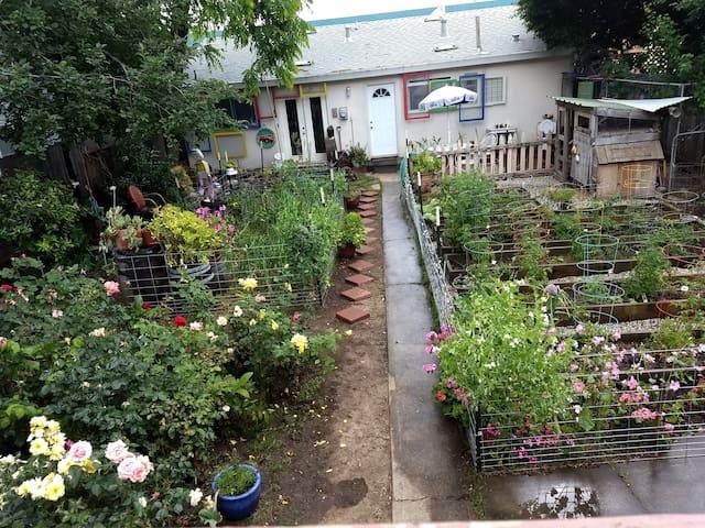 Midtown Garden Studio