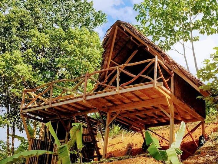 Overlooking Jungle Bar, Resto & Cottages
