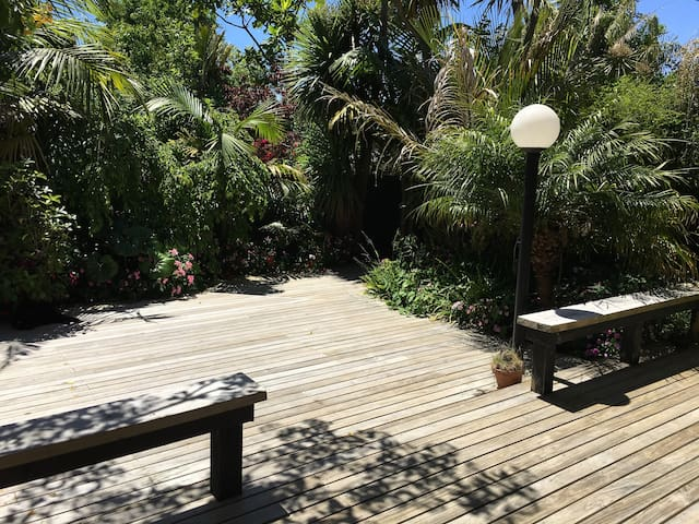 X Best Sunny Peaceful Tropical Oasis, Freemans Bay - Auckland