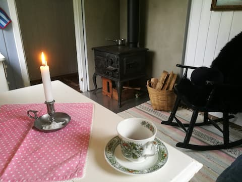 Gripen gard: Cosy cottage with woodburning stove