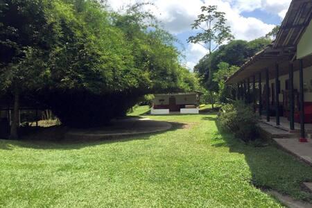 El Taxón Nature Lodge, Olyra Room (w breakfast)
