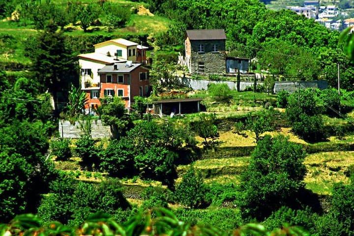 Agriturismo bucolico - Coreglia ligure - House