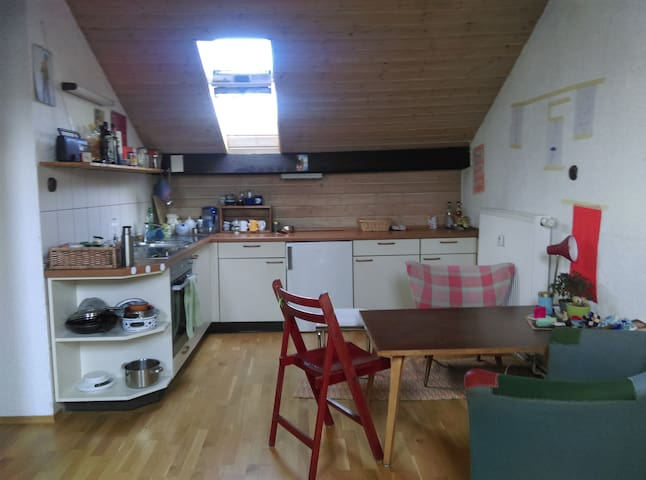 Großzügige Einzimmerwohnung unterm Dach - Karlsruhe - Apartamento