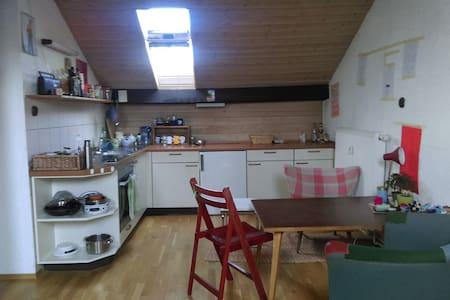 Großzügige Einzimmerwohnung unterm Dach - 卡尔斯鲁厄 - 公寓