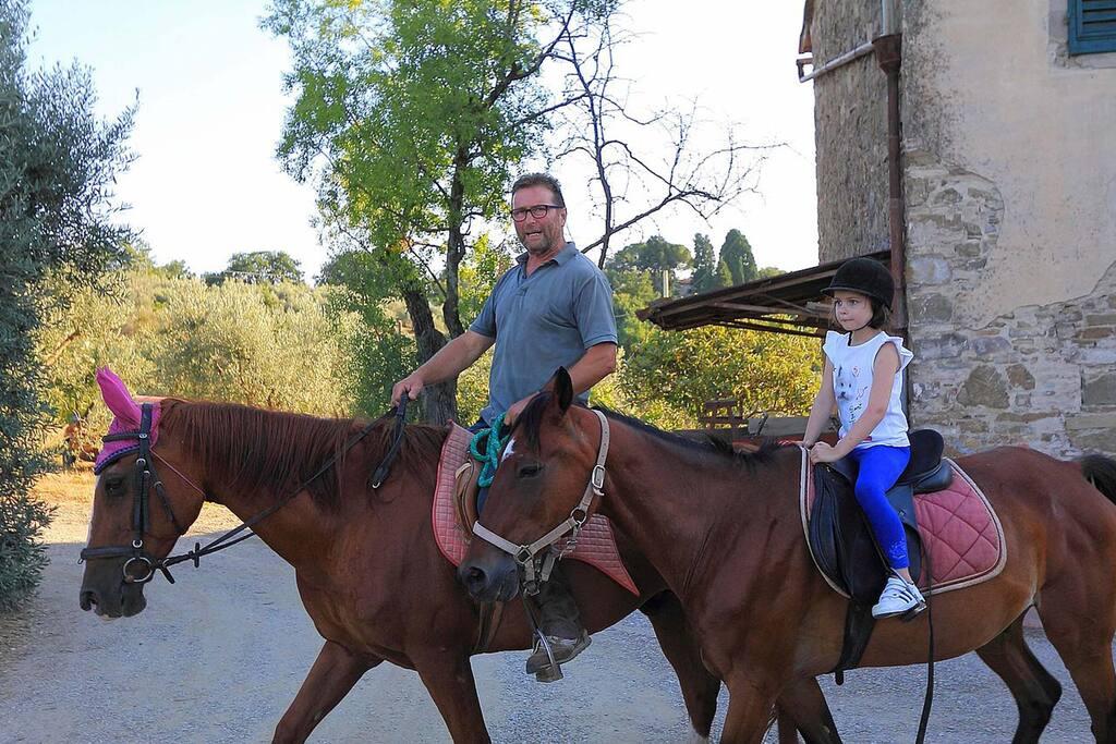 i nostri cavalli per passeggiate