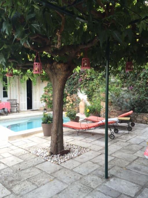 Piscine - Espace commun avec la maison