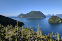 Our iconic view of Hat Island, Fox Island, and the Fox Island Spit from atop the Alpine Trail.