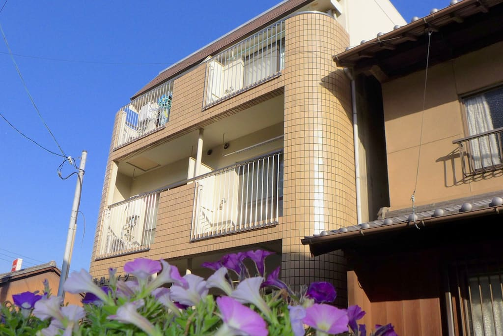 "Arrive at Apartment, ""Blue Sky Blue Sea"""