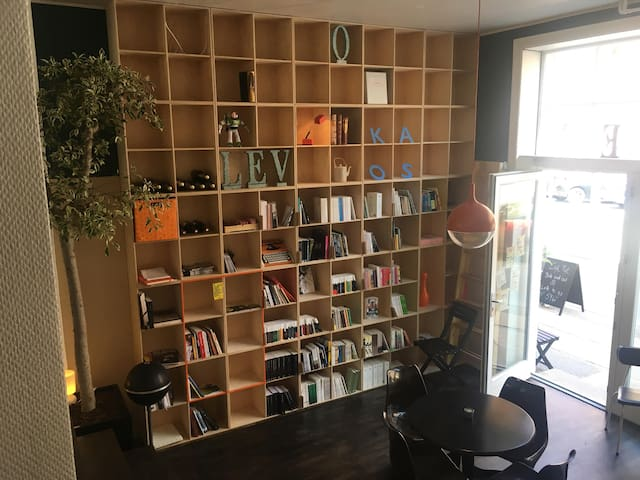 Room for rent in basement of café and bookstore