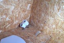 Casa de banho compostada. Compost Toilet.