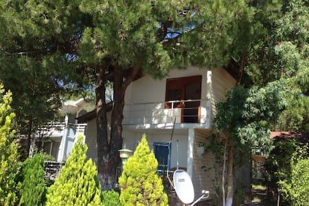 Sea front Villa at Lalzit Bay - Durrës
