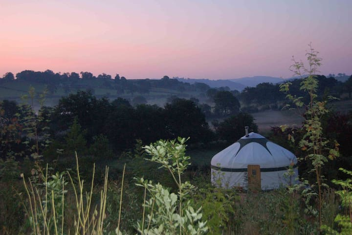 The Secret Yurts - Oak Yurt - Welshpool - Iurta