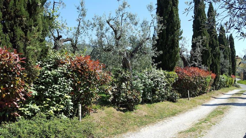 Casa vacanza il Palagio - Metropolitan City of Florence - Byt