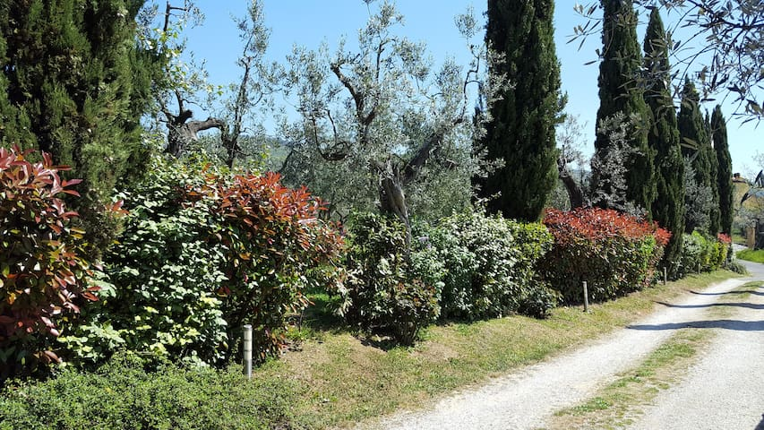 Casa vacanza il Palagio - Metropolitan City of Florence - 아파트