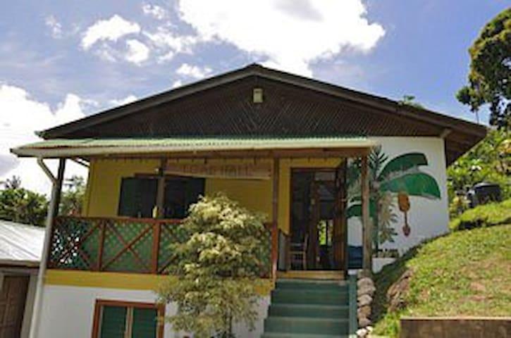 Toad Hall, Castara, Tobago - Castara - House