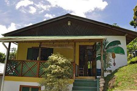 Toad Hall, Castara, Tobago - Dům