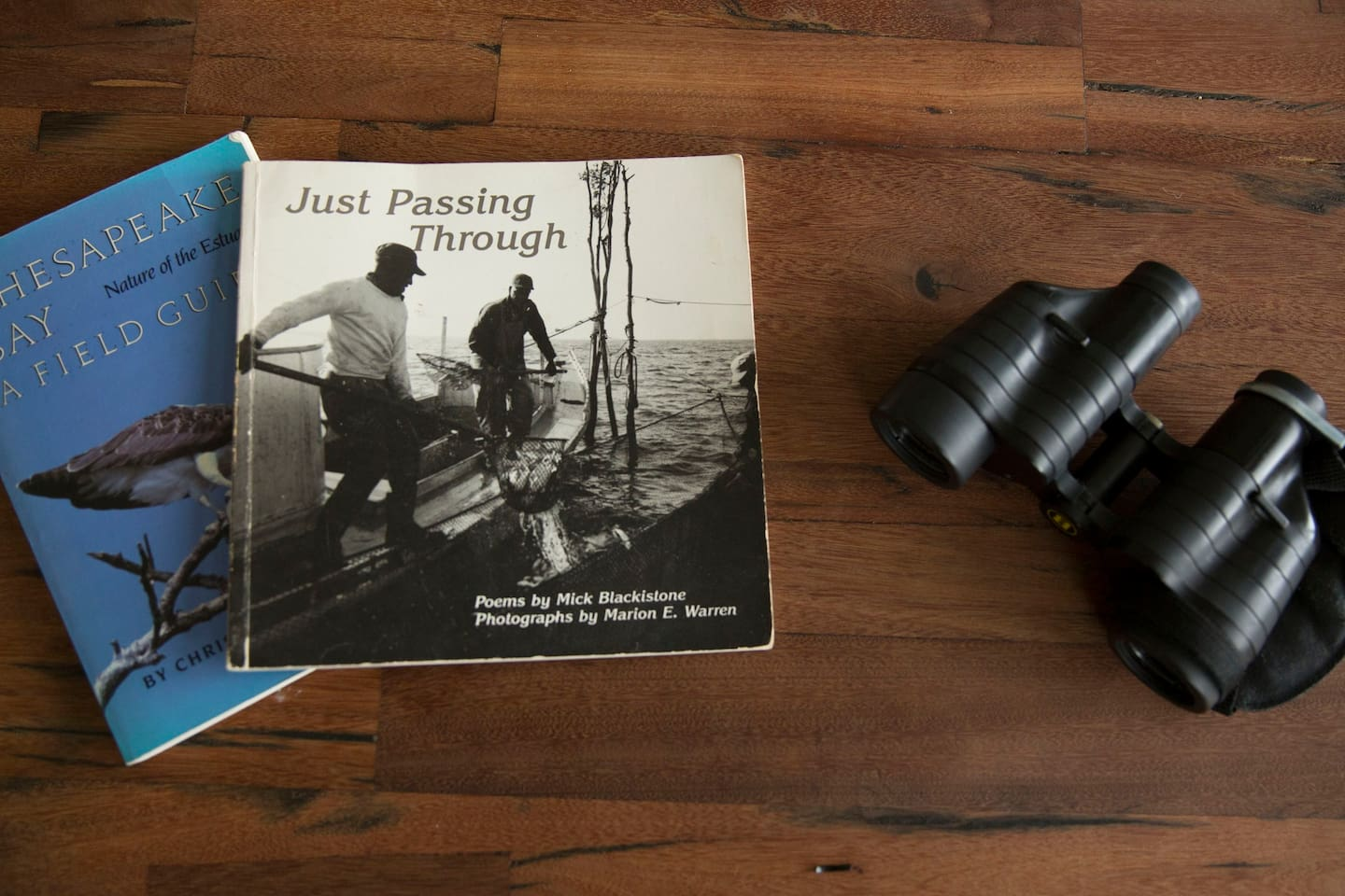 Tools of the birdwatching trade
