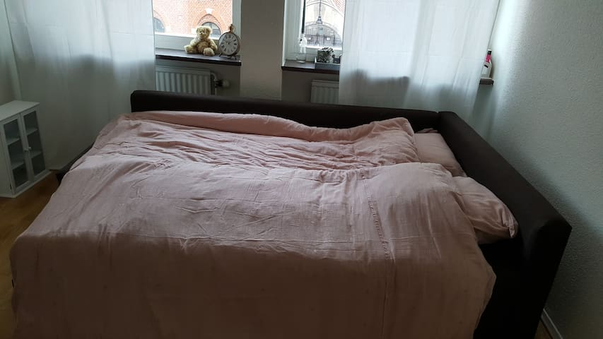 Sofa bed for two. New and comfortable with reasonable space.