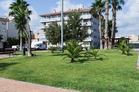 Beach and nature in the Ebro delta Tarragona