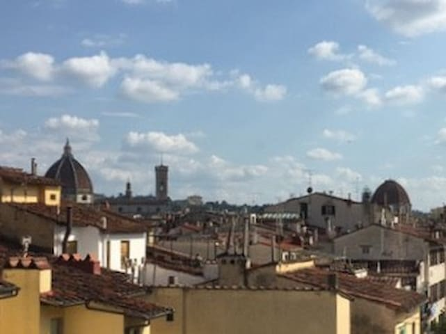 Beautiful Florence view Single room with terrace