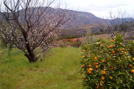 Fynbos Art route